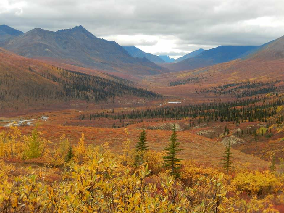 Tombstone Territorial park v provincii Yukon