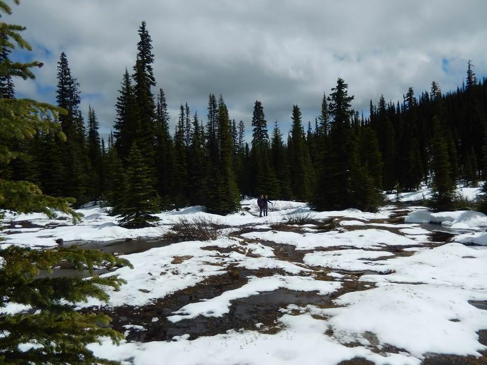 Hike v Banffu