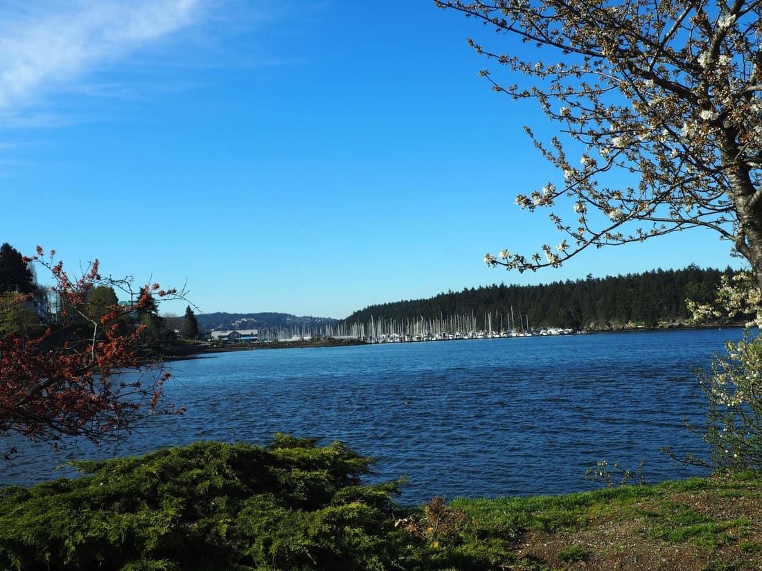 Plné kempy vancouverského ostrova