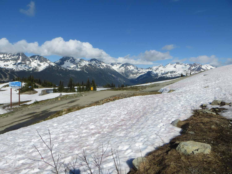 Pohled z Whistler Mountain - studium v Kanadě