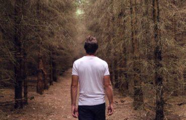 JakDoKanady pomáhá Zachraňme lesy