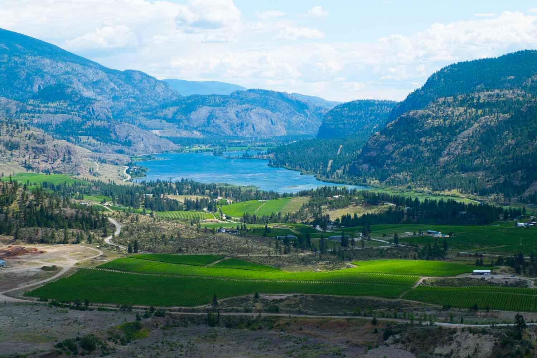 Okanagan Valley - práce na vinici