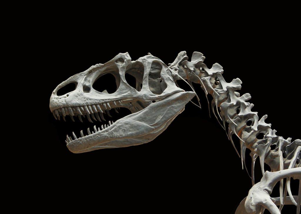 Dinosauři v Kanadě
