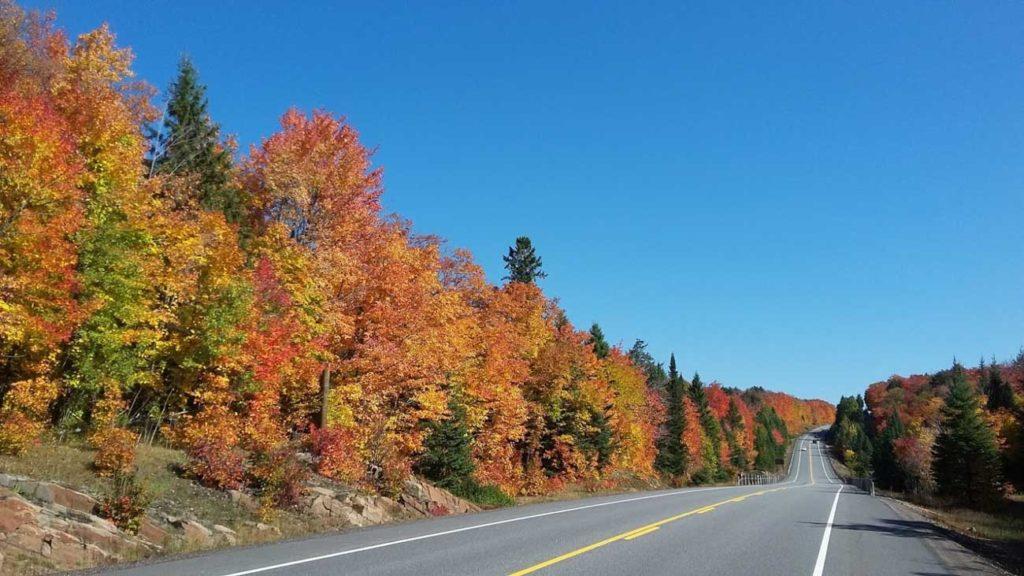 Rozhovor Aneta - Podzim v Algonquin provincial park