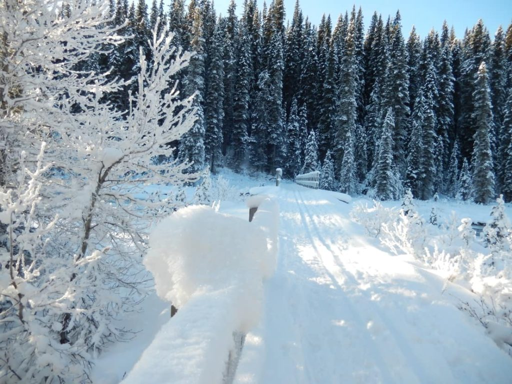 Zima v Kanadě
