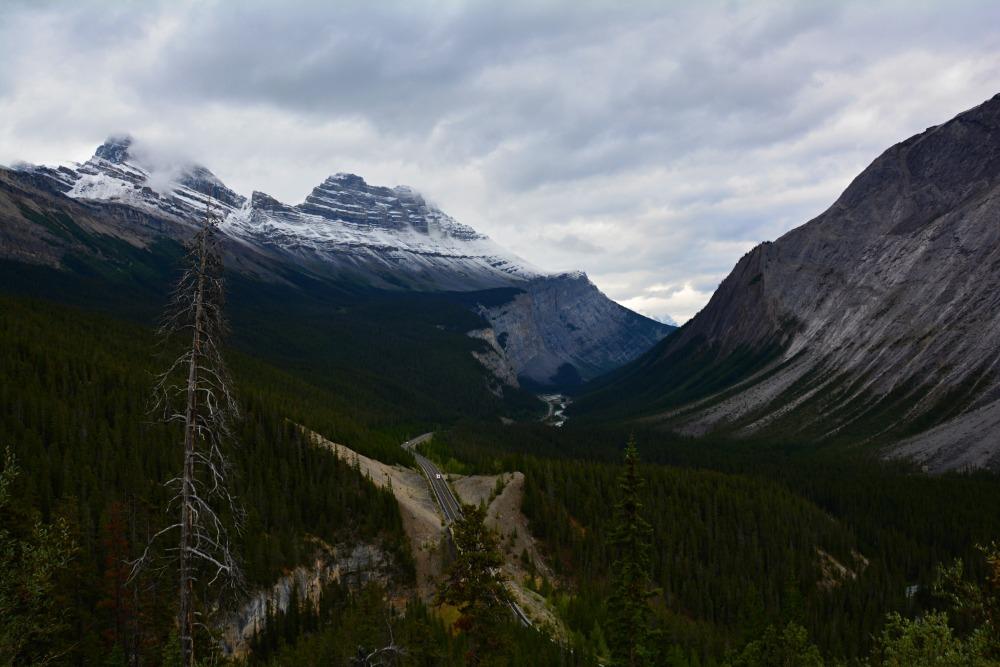 Rozhovor Vendula - cestování a práce v Kanadě v rámci workaway dobrovolnictví