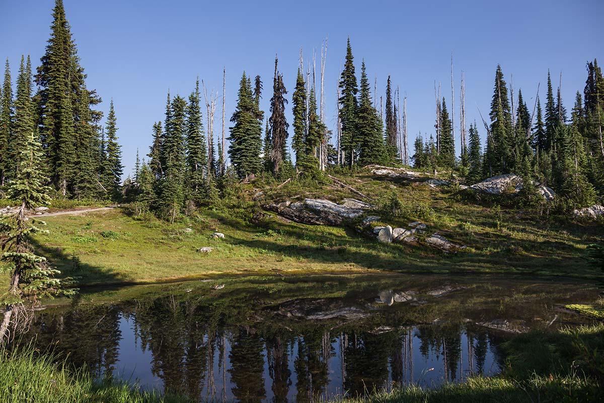 Jezero v Mount Revelstoke NP