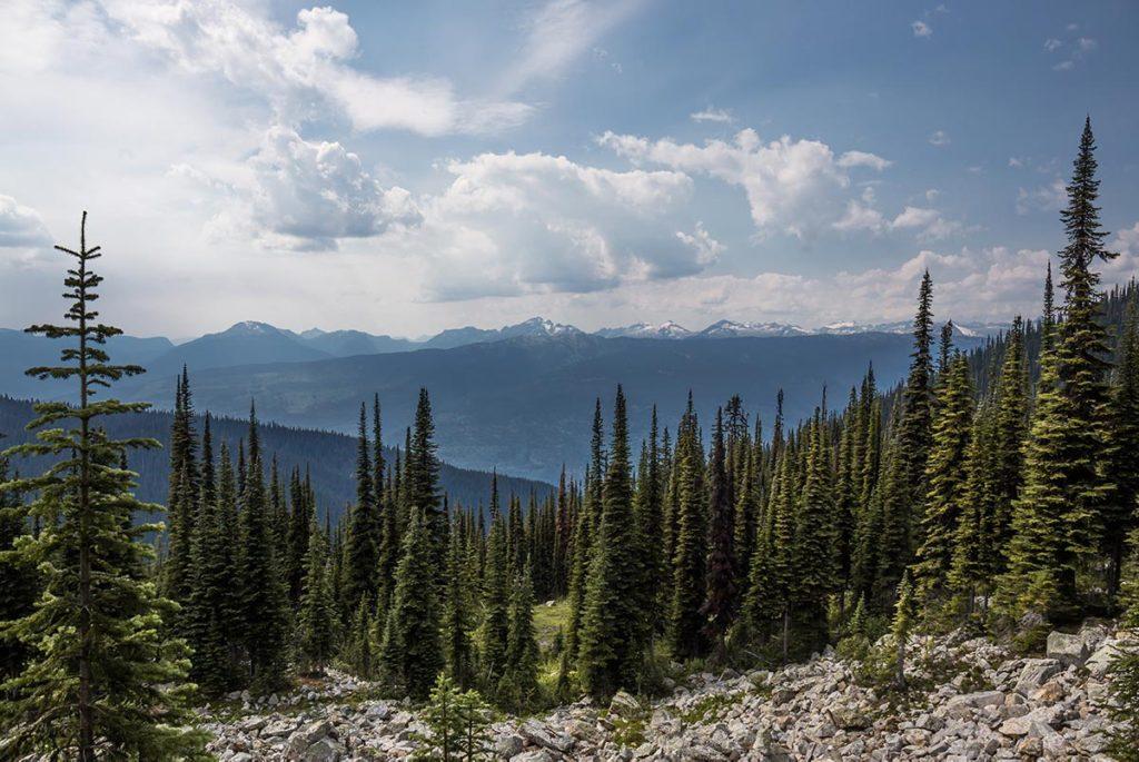Hory a lesy Mount Revelstoke
