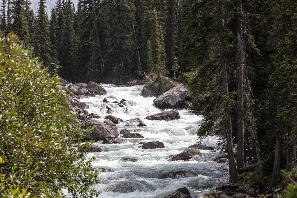 Národní park Jasper