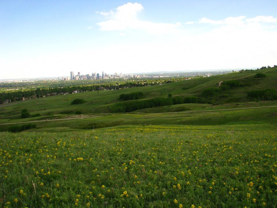 Nose Hill Park Calgary Kanada